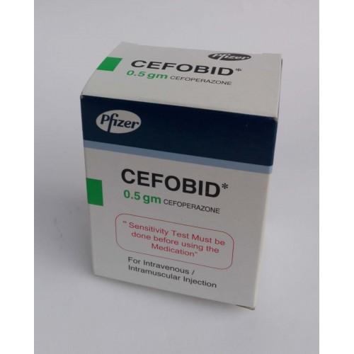 Liều dùng & Cách sử dụng thuốc Cefobid an toàn 1