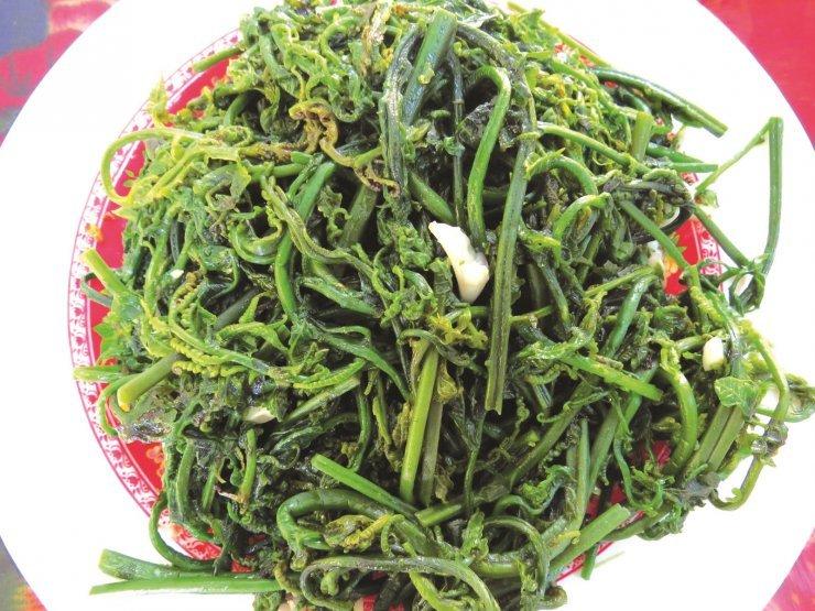 Thực hư về rau dớn đang được Trung Quốc thu mua ồ ạt